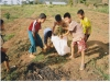 Projekt Wassertank 5